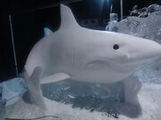 """Great White"" snow. Zwolle Netherlands 2011"